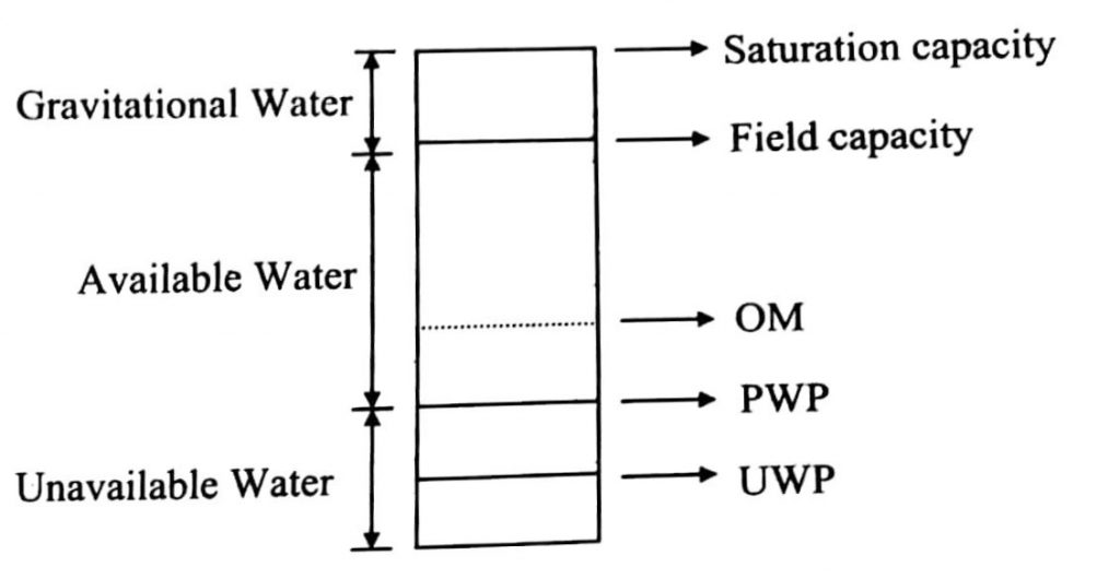 WATER HOLDING CAPACITY OF SOIL